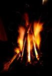 Paljenje Badnjaka - Badnje vece u Priboju